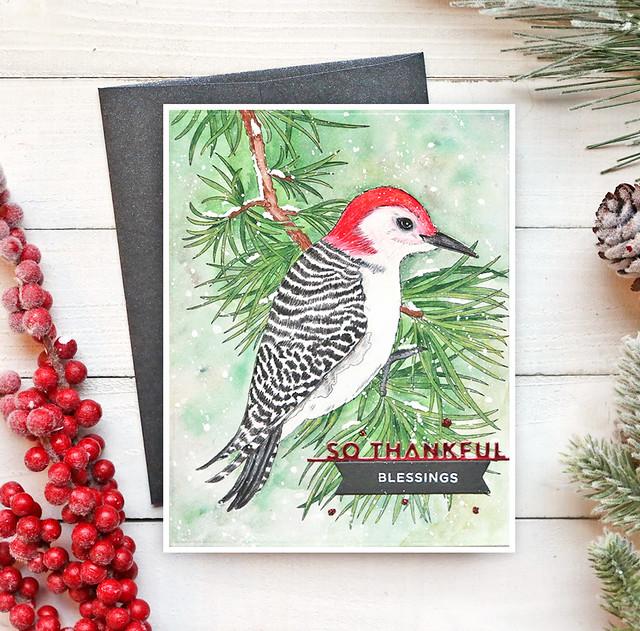 Winter Bird Colored 2