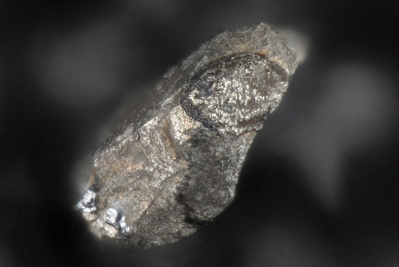 三千年鉱 / Michiroshiite-(Cu)