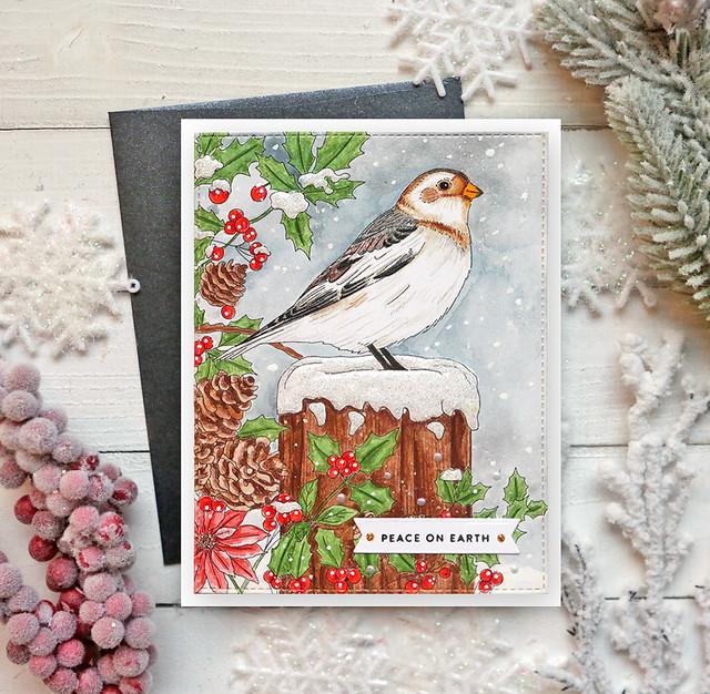 Winter Bird Colored 7