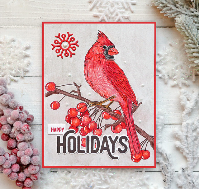Winter Bird Colored 6