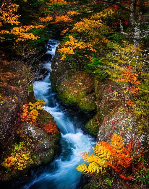 Japanese Waterfall # 5