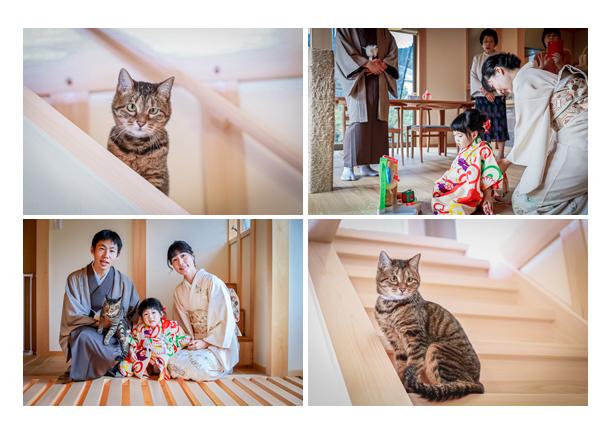 自宅で家族写真 出張カメラマン 飼い猫も一緒に