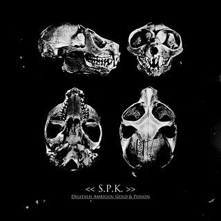 """SPK: Digitalis Ambigua - Gold & Poison"""