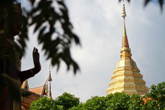 Chiangmai, 23/11/2019