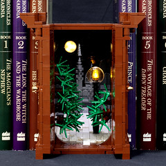 Narnia Wardrobe Book Nook - Inside