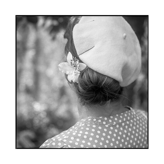 armelle 7 • gevrey-chambertin, burgundy • 2019