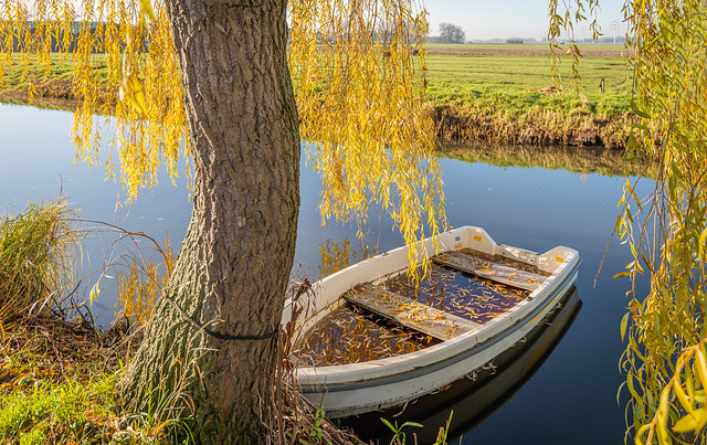 Rowboat in autumn