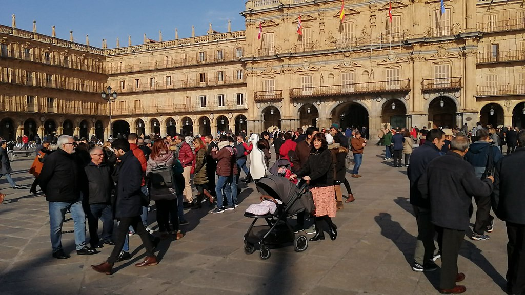 Turistas puente de la Constitución en Salamanca.  (10)