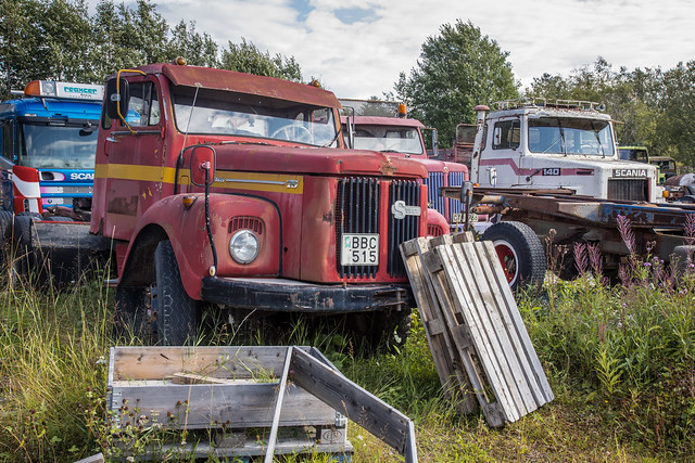 Abandoned Scania trucks