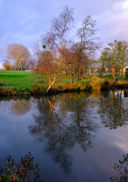 Park Reflections