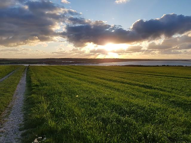 Lemvig fields