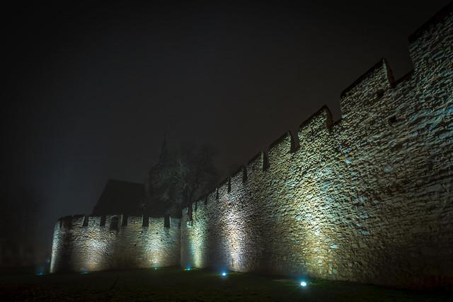 Burgkirche Oberingelheim