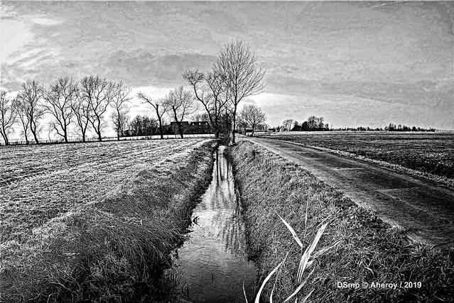 B&W,Groninger Landschap,Groningen ,the Netherlands,Europe