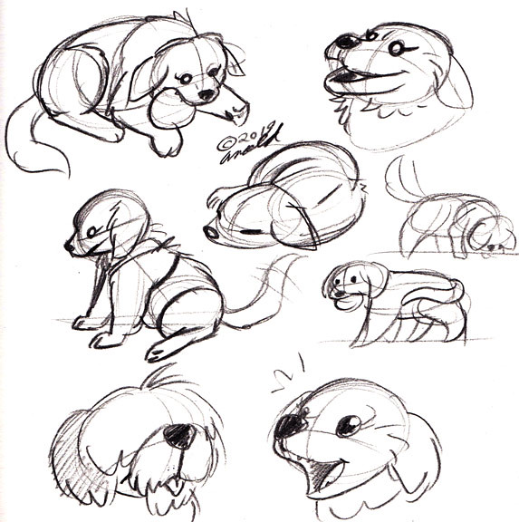 8.19.19 - Dog Studies