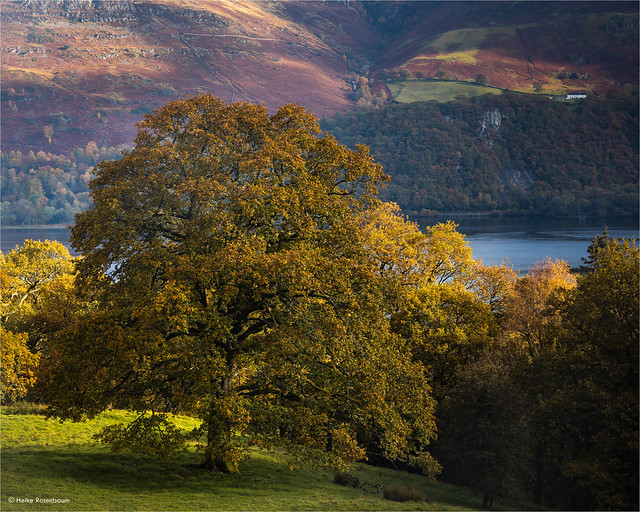 Autumn light in the Lake District