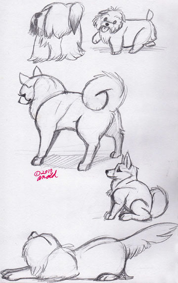 12.6.19 - National Dog Show Sketches
