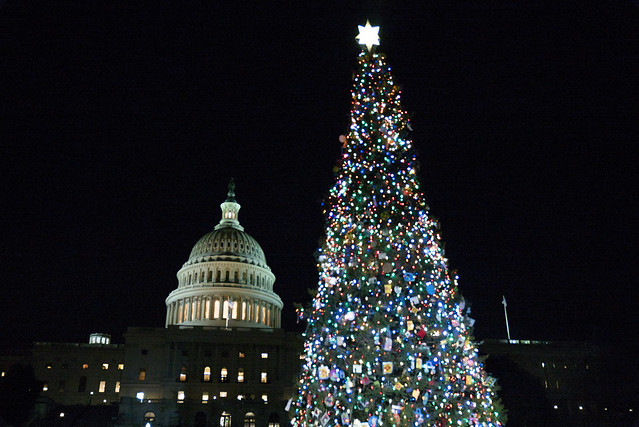 The People's Tree lights up the U.S. Capitol