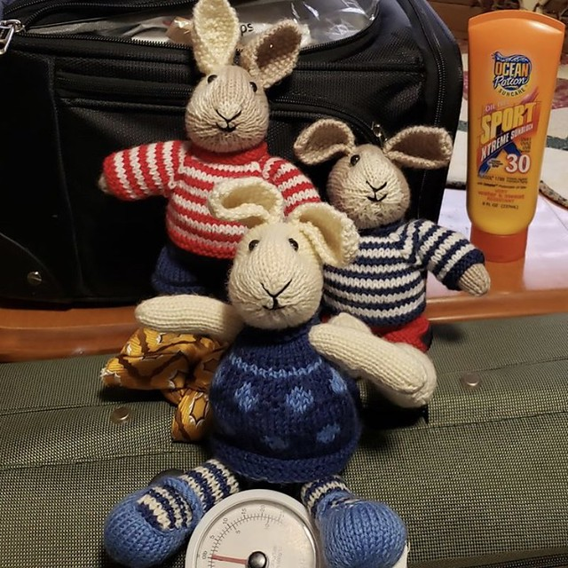 Look at the sweet Little Cotton Rabbits that Deb knit! They hitched a ride with her on her way to a destination wedding!