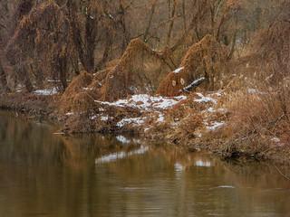 Whippany River_2898