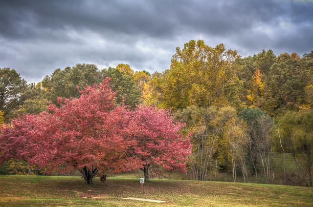 Cane Creek Park