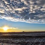 3. Detsember 2019 - 15:22 - Farmers field sunset