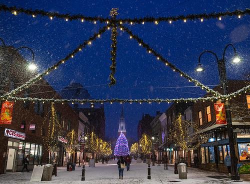 Snowfall on Christmas Avenue