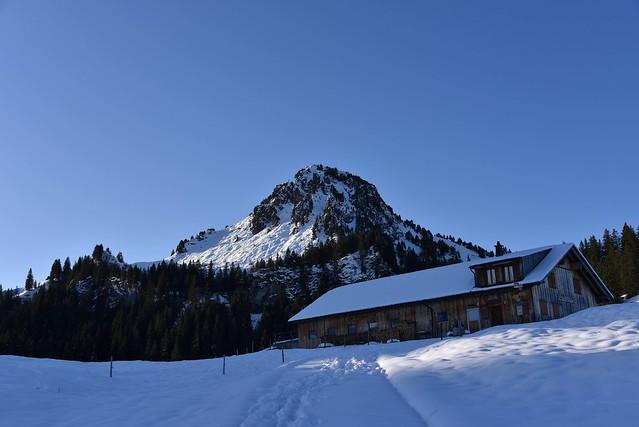 Tubenmoos/Roggenstock (Ybrig, Kanton Schwyz)