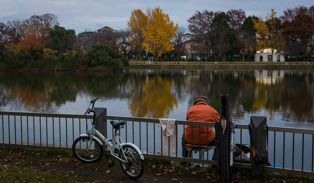 Autumn Angler