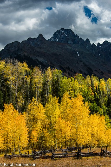 Mountain High, Aspens Bright