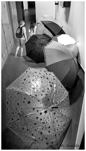 paseando entre paraguas