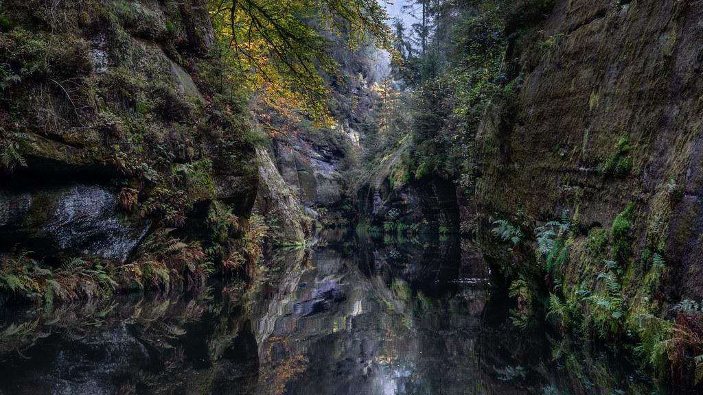 The bankster - Der Angler