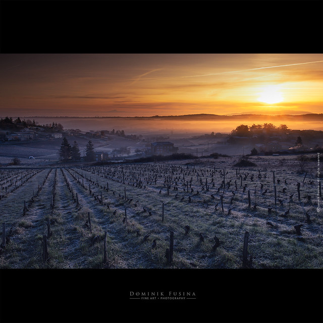 Sunrise in Winter - Beaujolais