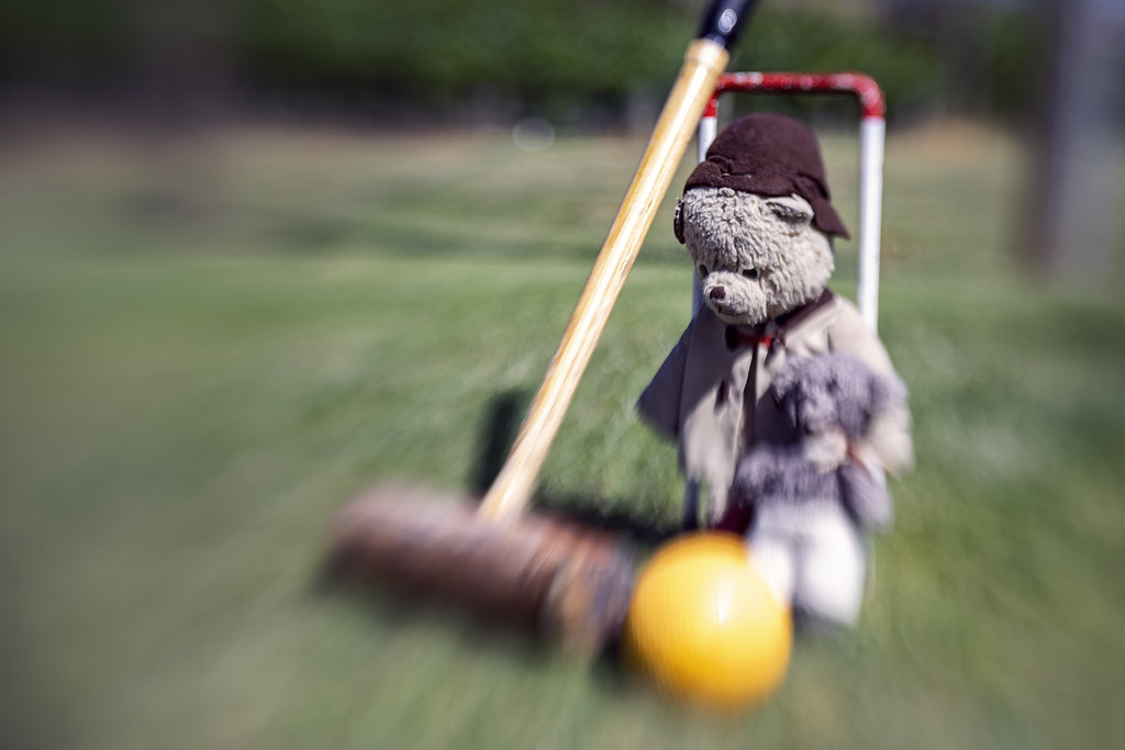 Anyone for Croquet 2019-12-06 (5D4_8431)
