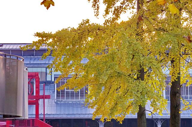 203 Paris Novembre 2019 - Porte de Pantin, Parc de La Villette
