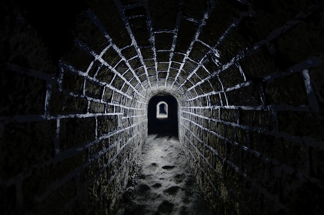 Enter the Web...