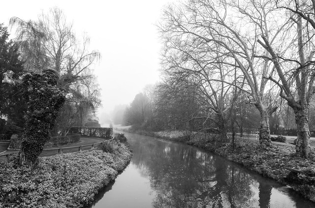 Misty morning in Rösrath, NRW.