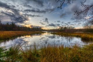 Worgreens Lake Nature Reserve