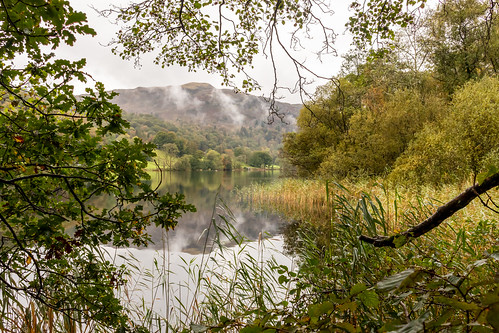grasmere lake water framed mountain view vista landscape tree reeds branch foliage cumbria lakedistrict nationalpark