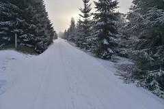 Sníh na Jizerkách