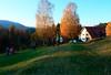 Foto: Timo Gmeiner // #Obstbäumepflanzen