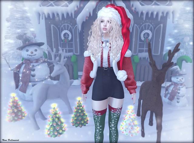- Santa's Little Helper -