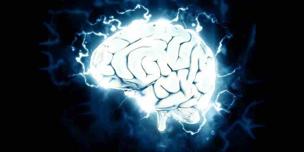 Réduire l'inflammation cérébrale permet d'inverser la démence