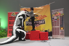 Fuzzal being groomed for #FossilofTheDay #COP25 DEC 7 - IMG_7053
