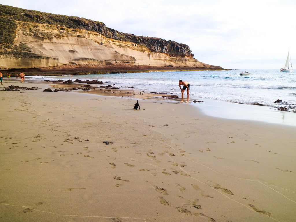 Perro jugando en la playa de Diego Hernández en Tenerife
