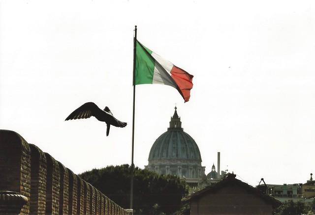 flag & wings