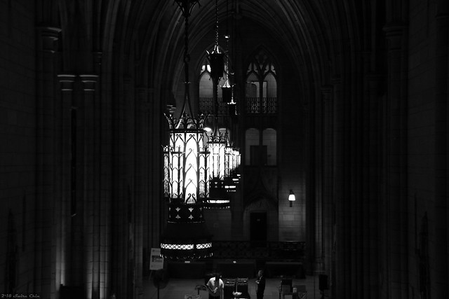 Cathedral of Learning lights (B+W)