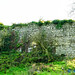 Shanpallas Castle, County Limerick
