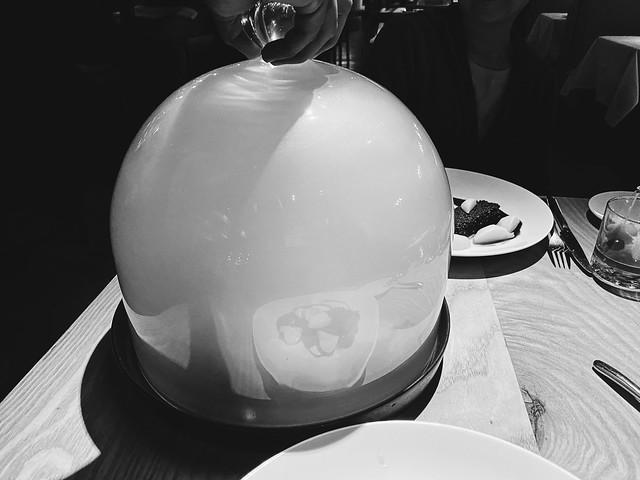 domed smoke duck.