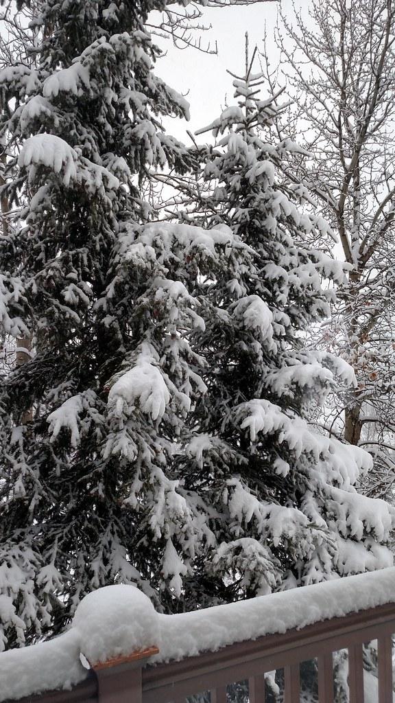Yay, snow!