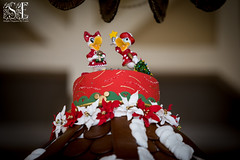 Donald and Daisy Carousel Topper